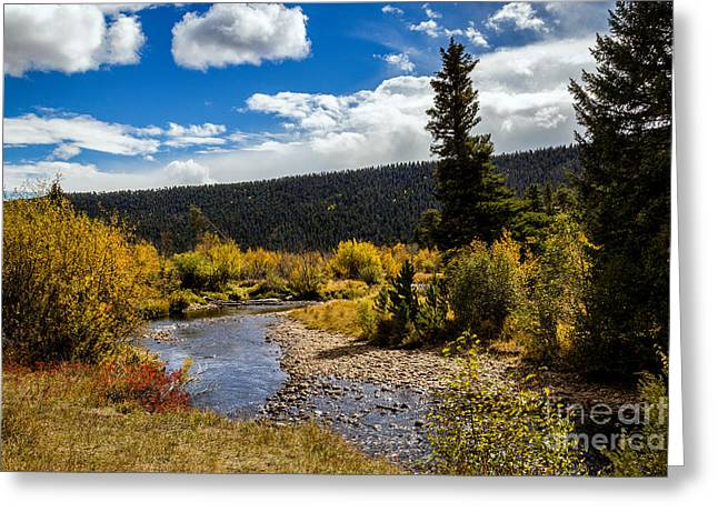 River Flooding Greeting Cards - Rocky Mountain Afternoon Greeting Card by Jon Burch Photography