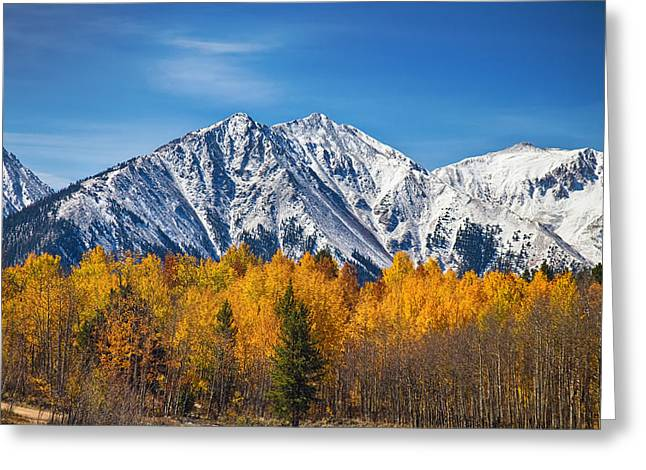 Rocky Mountain Autumn High Greeting Card by James BO  Insogna