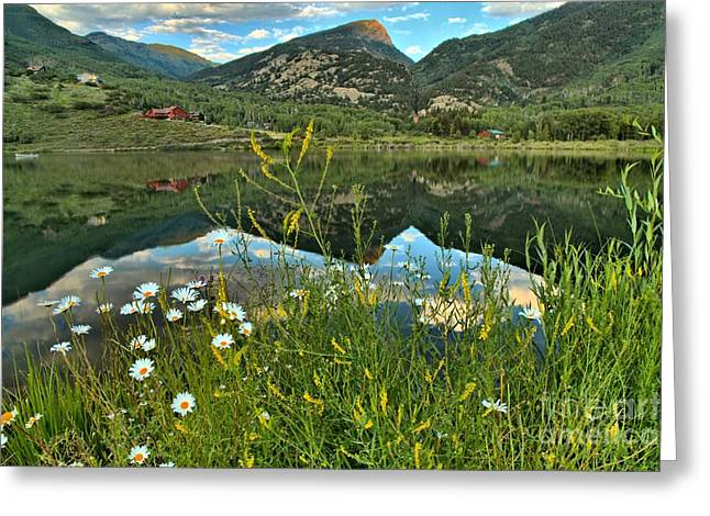 Rocky Mountain Beaver Lake Greeting Card by Adam Jewell