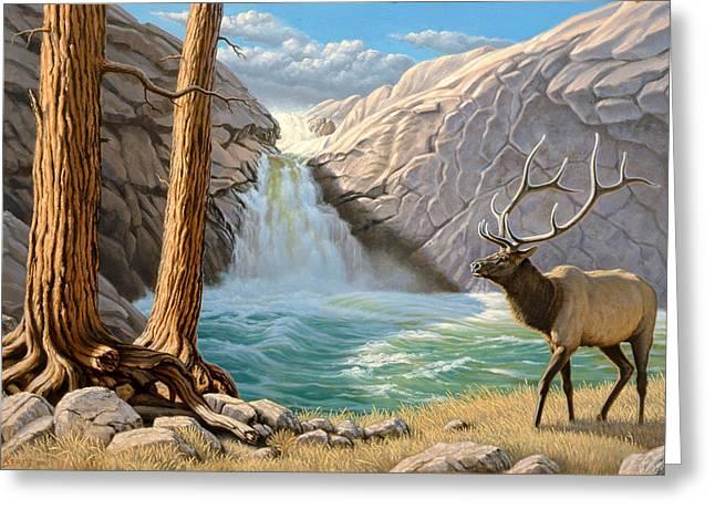 Waterfall Greeting Cards - Rocky Mountain Elk Greeting Card by Paul Krapf