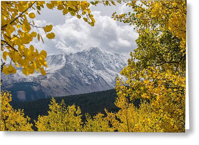 Boreas Greeting Cards - Rocky Mountain Gold Greeting Card by Gene Tewksbury