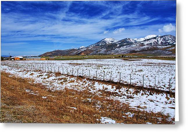 Rocky Mountain Foothills Greeting Cards - Rocky Mountain Ranch Greeting Card by Aidan Moran