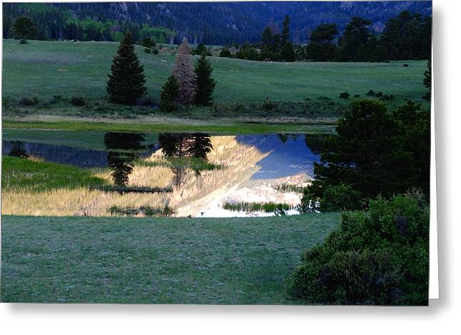 Rocky Mountain Sheep Greeting Cards - Rocky Mountain Reflection Greeting Card by Dan Sproul