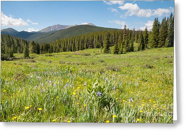 Boreas Greeting Cards - Rocky Mountain Splendor Greeting Card by Sharon Day