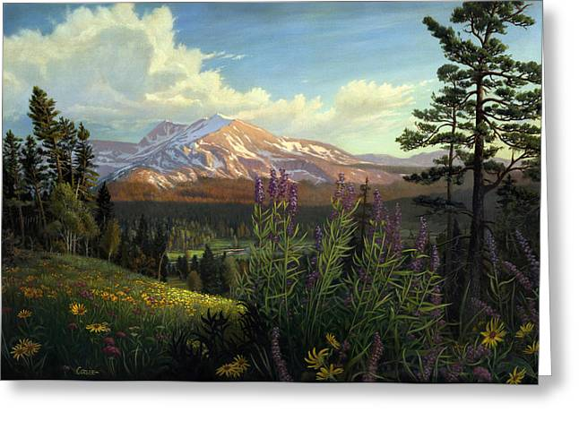 Rocky Mountains Greeting Cards Greeting Cards - Rocky Mountain Spring Meadow Blank Greeting Card Greeting Card by Walt Curlee