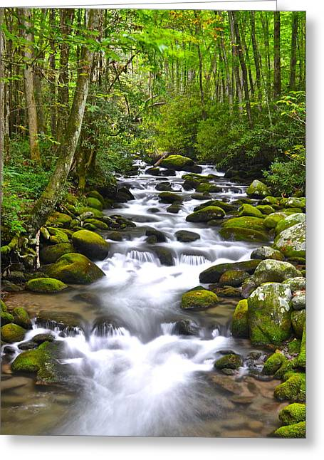 Cavern Greeting Cards - Rocky Mountain Stream Greeting Card by Frozen in Time Fine Art Photography