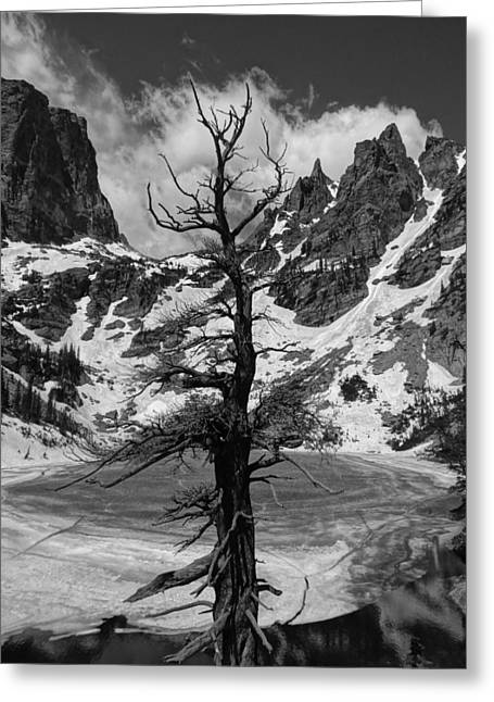 Rocky Mountains In Winter Greeting Card by Dan Sproul