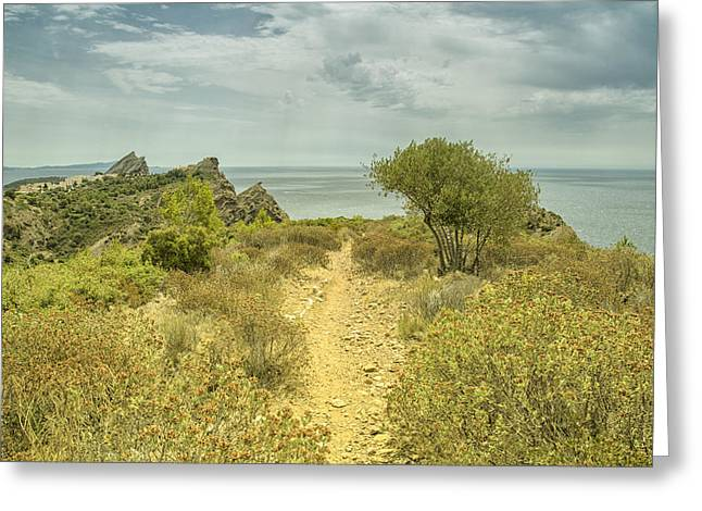 South Of France Greeting Cards - Rocky Path to the Sea Greeting Card by Georgia Fowler