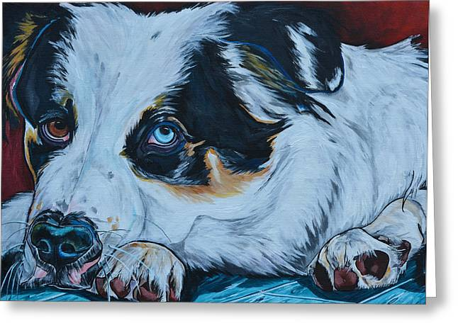 Commission Work Greeting Cards - Rocky Greeting Card by Patti Schermerhorn