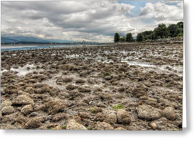 Ocean Landscape Greeting Cards - Rocky Road Greeting Card by James Wheeler