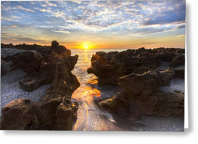 Martin County Greeting Cards - Rocky Rush Greeting Card by Debra and Dave Vanderlaan