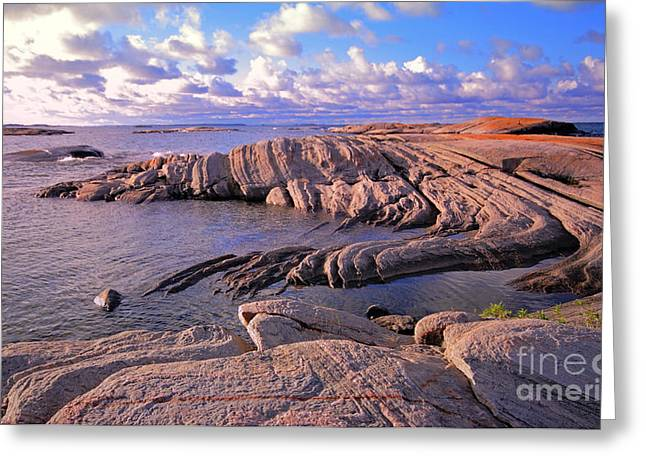 Biosphere Reserve Greeting Cards - Rocky Shore Greeting Card by Charline Xia