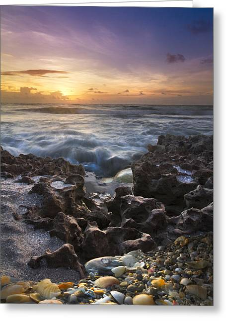 Juno Greeting Cards - Rocky Shore Greeting Card by Debra and Dave Vanderlaan