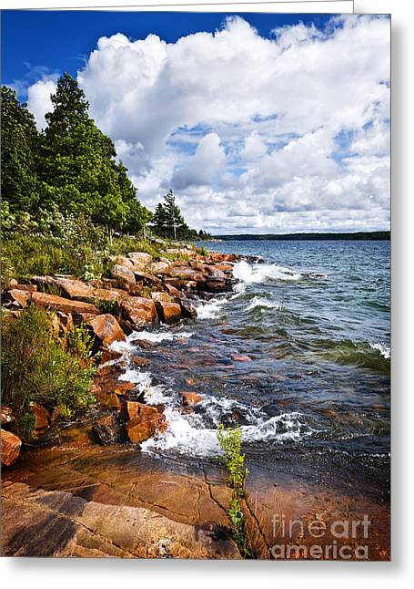 Georgian Bay Greeting Cards - Rocky shore in Georgian Bay Greeting Card by Elena Elisseeva