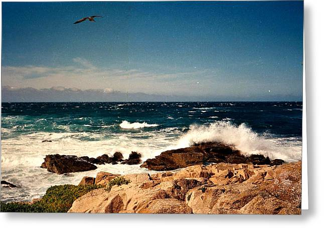 Point Lobos Greeting Cards - Rocky Shore Greeting Card by James Graham