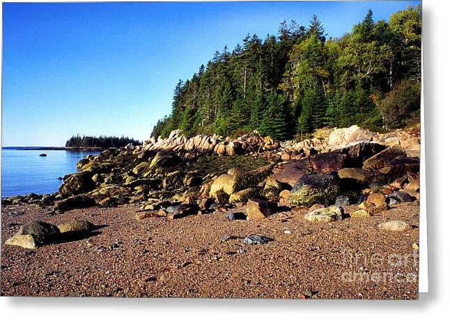 Rocky Shoreline Deer Isle Maine Greeting Card by Thomas R Fletcher