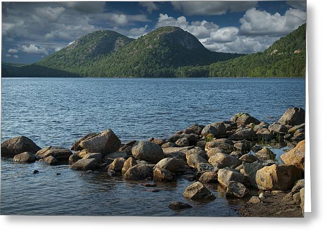 Maine Shore Greeting Cards - Rocky Shoreline in Acadia National Park Greeting Card by Randall Nyhof