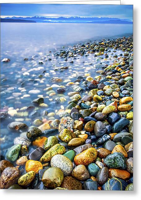 Snow Capped Greeting Cards - Rocky Shoreline Greeting Card by Kyle Wasielewski