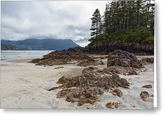 Cole Greeting Cards - Rocky Shores Greeting Card by Carrie Cole