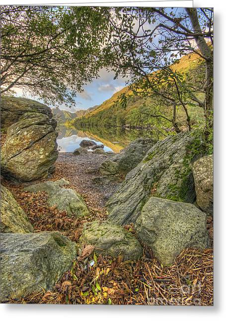 Rocky Shore's Greeting Card by Darren Wilkes