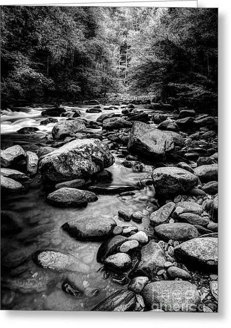 Flowing Stream Greeting Cards - Rocky Smoky Mountain River Greeting Card by Michael Eingle