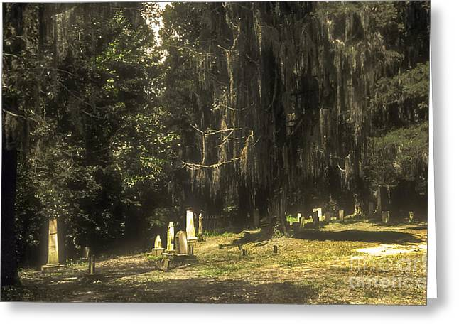 Natchez Trace Parkway Greeting Cards - Rocky Springs Church Cemetery Greeting Card by Bob Phillips