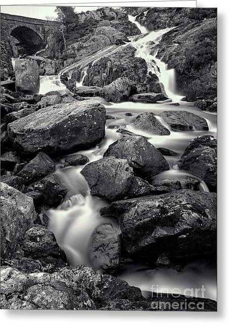 Moss Digital Art Greeting Cards - Rocky Stream Greeting Card by Adrian Evans