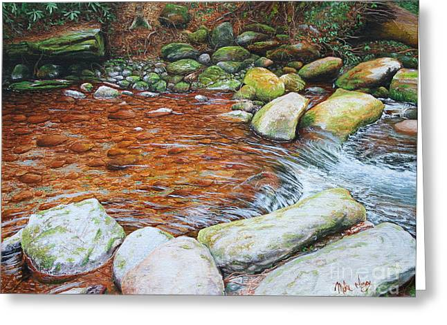 Mike Ivey Greeting Cards - Rocky Stream Greeting Card by Mike Ivey