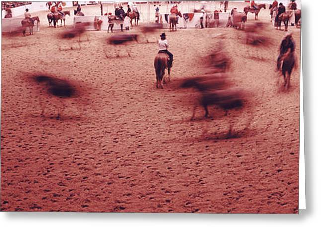 Working Cowboy Photographs Greeting Cards - Rodeo Arena, Fort Worth Stock Show Greeting Card by Panoramic Images
