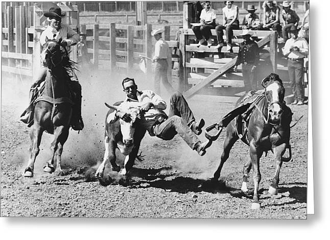 Steer Greeting Cards - Rodeo Cowboy Bulldogging Greeting Card by Underwood Archives