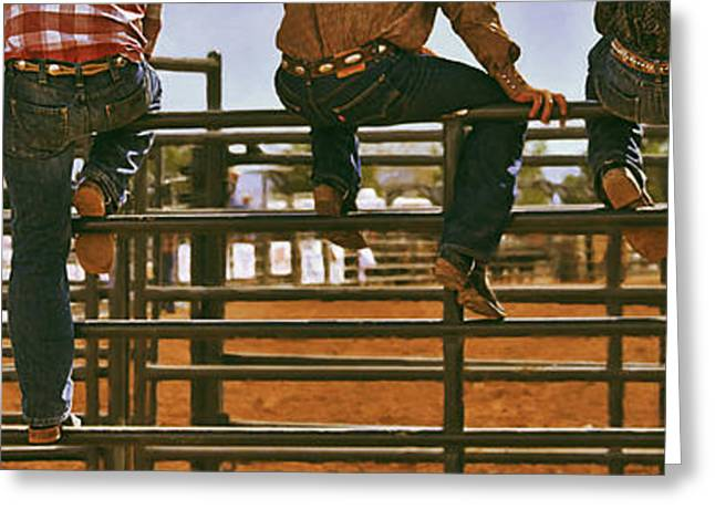 Warm Tones Greeting Cards - Rodeo Fence Sitters- Warm Toned Greeting Card by Priscilla Burgers