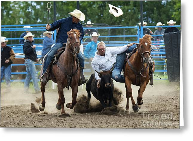 Steer Greeting Cards - Rodeo Going To Get You Greeting Card by Bob Christopher