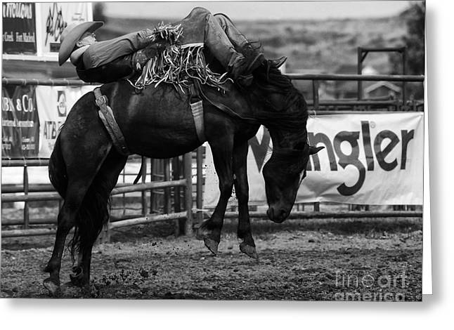 Bucking Horses Greeting Cards - Rodeo Power Of Conviction Greeting Card by Bob Christopher