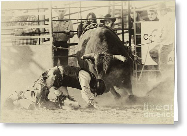 Bull Riding Greeting Cards - Rodeo Prepared To Be Punished Greeting Card by Bob Christopher