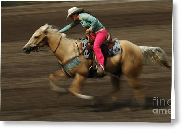 The Horse Greeting Cards - Rodeo Riding A Hurricane 2 Greeting Card by Bob Christopher