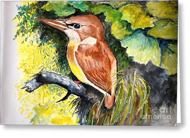 Mangrove Forest Greeting Cards - Rofous - backed Kingfisher  Greeting Card by Jason Sentuf