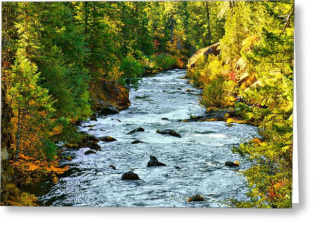 Rogue Greeting Cards - Rogue River Melody Greeting Card by Diane Schuster