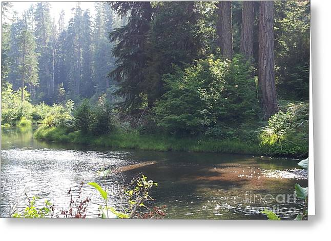 Recently Sold -  - Landscape Framed Prints Greeting Cards - Rogue River Reveries Greeting Card by Lynn Hall