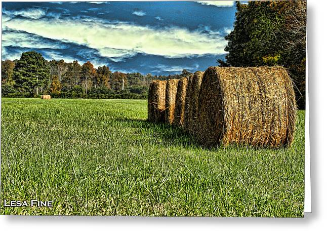 Alabama Greeting Cards - Rolled Hay Bales HDR Art Greeting Card by Lesa Fine
