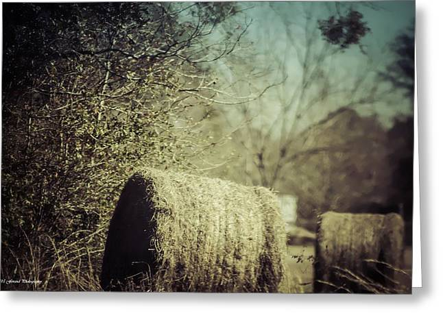 Hayloft Greeting Cards - Rolling Hay Greeting Card by Debra Forand