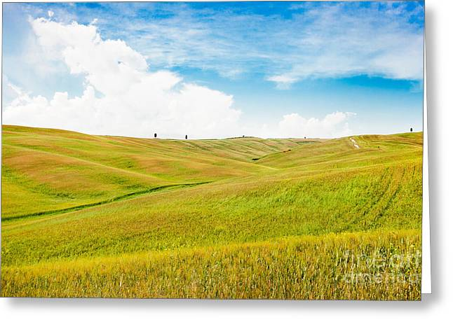 Chianti Greeting Cards - Rolling hills in Tuscany Greeting Card by JR Photography