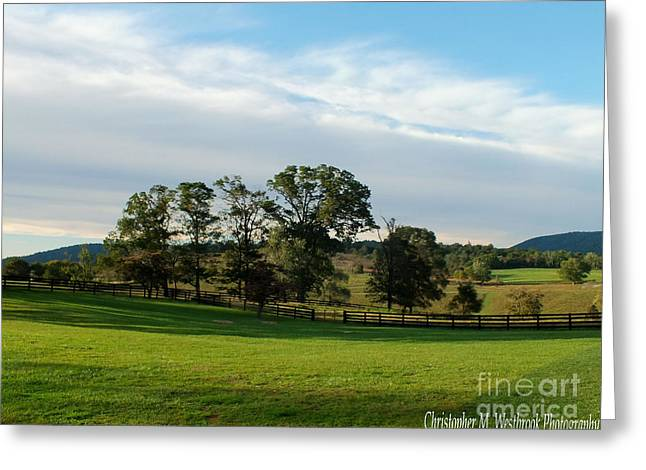 Marriot Greeting Cards - Rolling Hills near Marriot Ranch Greeting Card by Christopher Westbrook