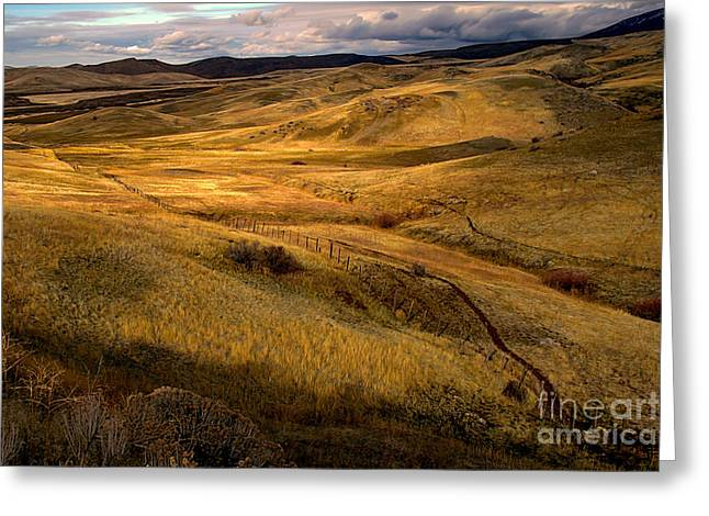 Landsacape Greeting Cards - Rolling Hills Greeting Card by Robert Bales