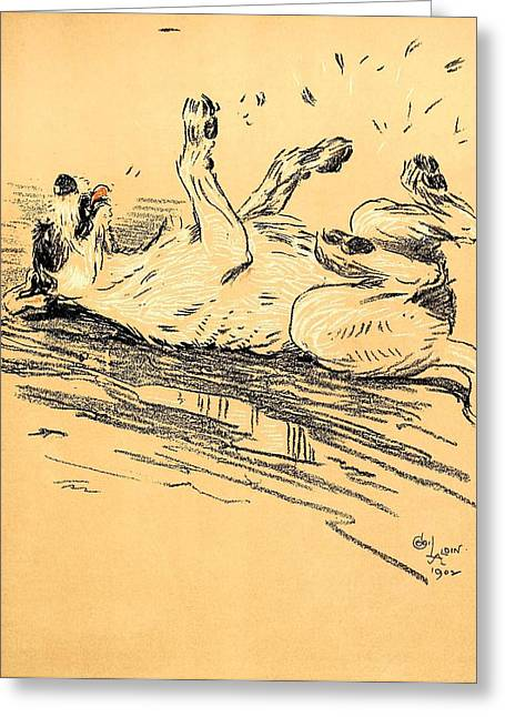 Aldin Greeting Cards - Rolling In The Mud - A Dog Day Collection 5 of 27 Greeting Card by Cecil Aldin