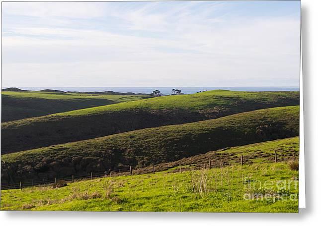 Pt Reyes Greeting Cards - Rolling Landscape Hills of Point Reyes National Seashore California DSC2408 Greeting Card by Wingsdomain Art and Photography