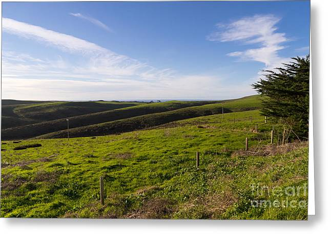Pt Reyes Greeting Cards - Rolling Landscape Hills of Point Reyes National Seashore California DSC2411 Greeting Card by Wingsdomain Art and Photography