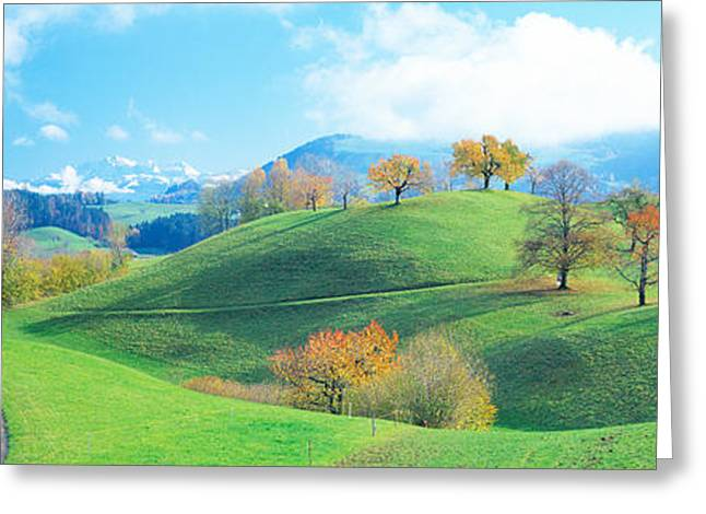 Zug Greeting Cards - Rolling Landscape, Zug, Switzerland Greeting Card by Panoramic Images