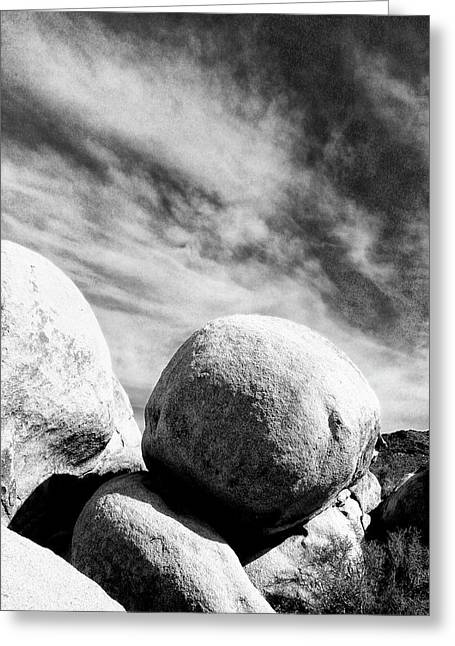 Rolling Stones Greeting Cards - ROLLING STONE BW Joshua Tree Greeting Card by William Dey