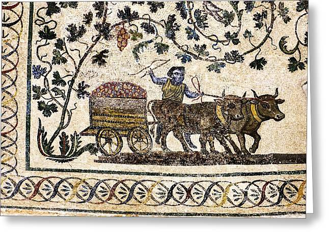 Erotes Greeting Cards - Roman Agriculture Greeting Card by Science Photo Library