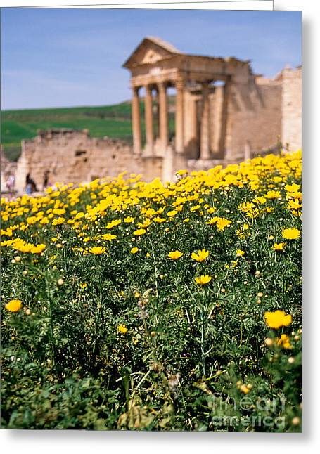African Heritage Greeting Cards - Roman temple Tunisia Greeting Card by Ryan Fox